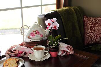 bi-color-mini-with-tea-set