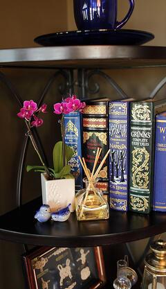 mini-purple-orchid-on-bookcase