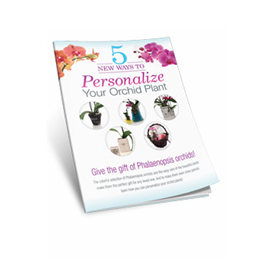 Personalize your orchid plant