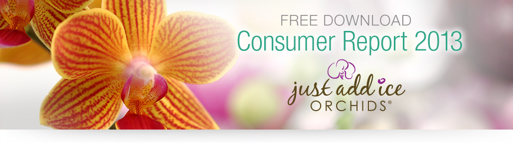 Free Download Consumer Report 2013