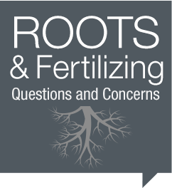 Roots & fertilizing