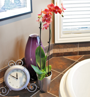 5 Interesting Ways To Use Orchids and Vases In Your Home Décor