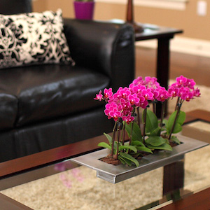5 Ways to Liven Up Your Living Room with Color
