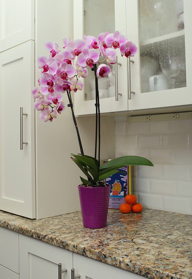 5 Simple Kitchen Decorating Ideas