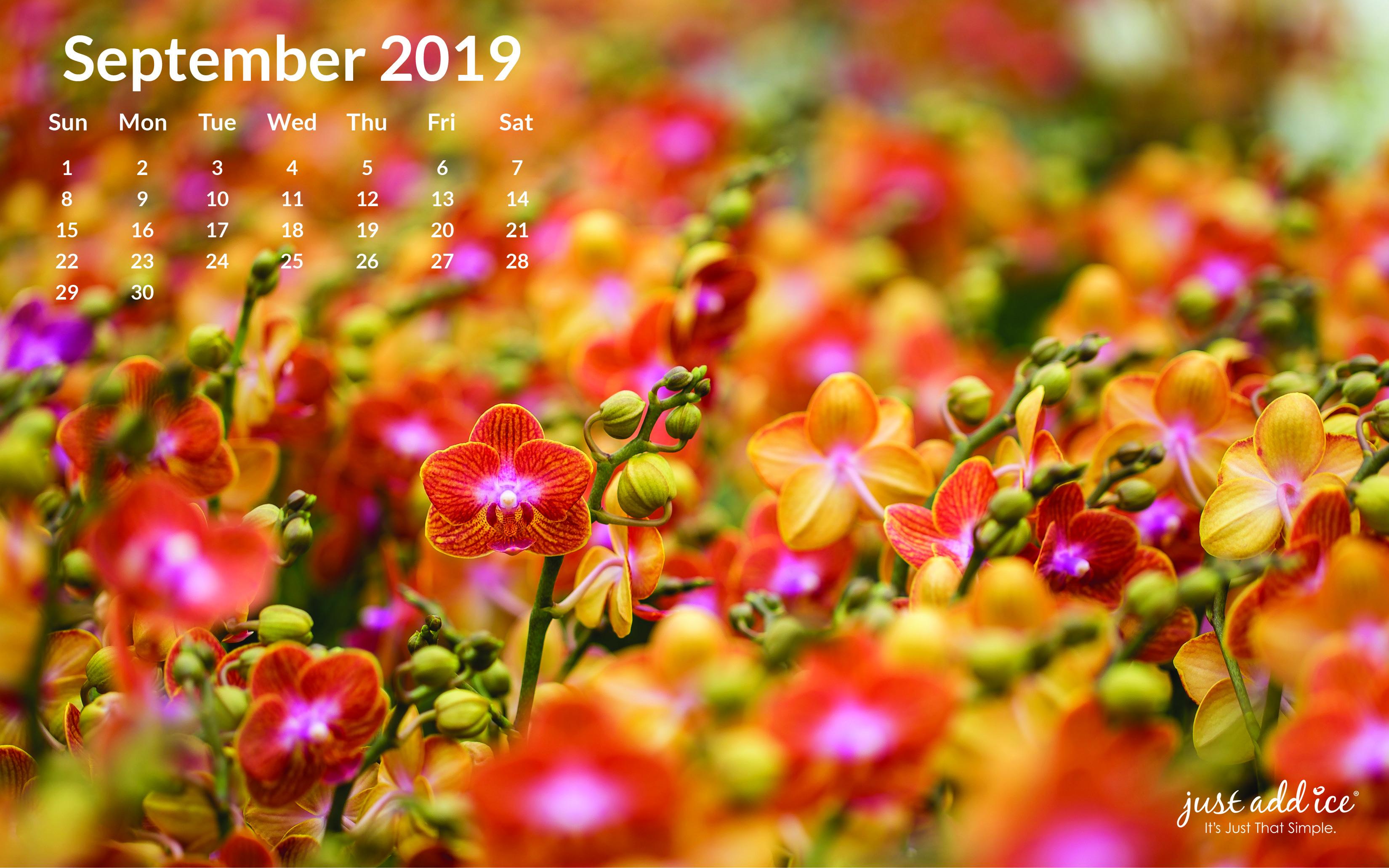 September 2019 Watering Calendar
