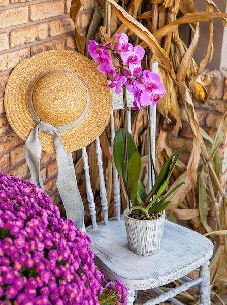 Fall-home-decor-cornhusks.jpg