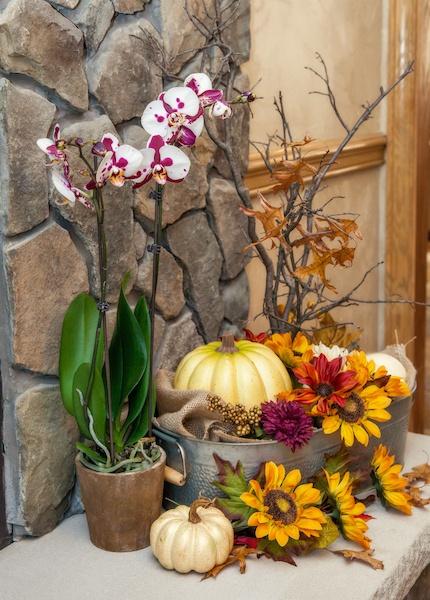 Fall-home-decor-pumpkins.jpg