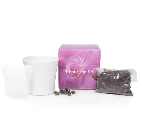 product-img-repotting-kit-1