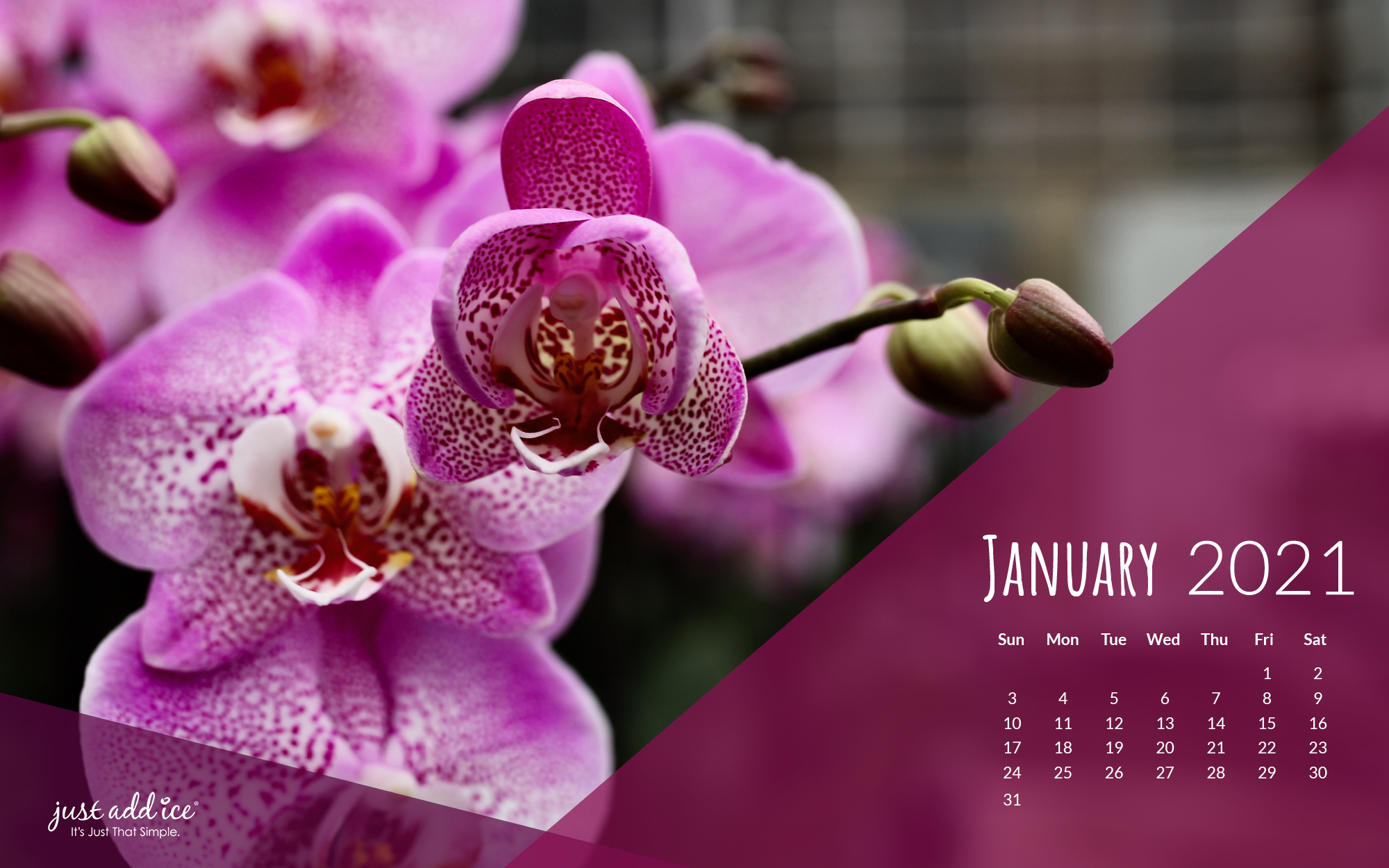 January 2021 Watering Reminder