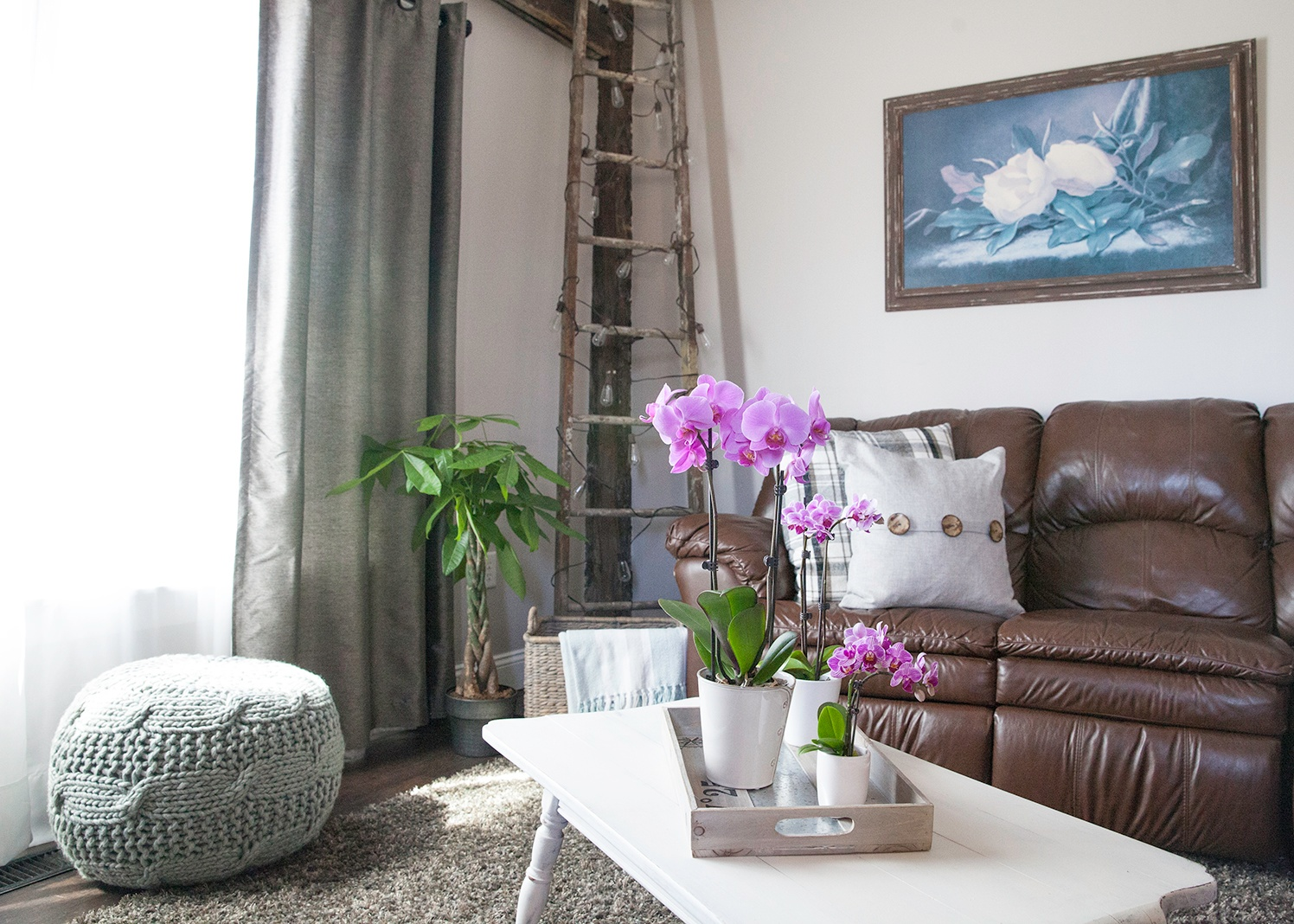 Orchid Living Room Couch