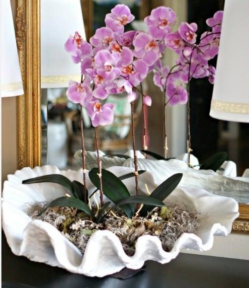 Phalaenopsis-orchid-decor.jpg