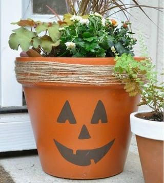orchid-pots-planters-pumpkin.jpg