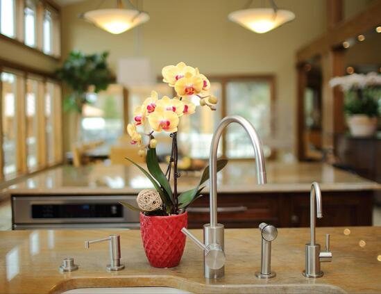 floral-sales-kitchen-orchid.jpg