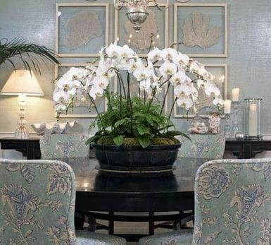 horizontal orchid arrangements