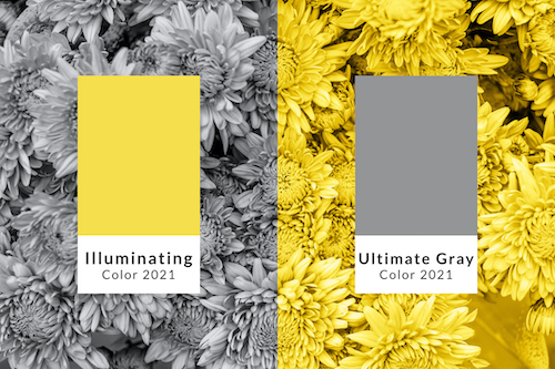 pantone-color-of-the-year-2021