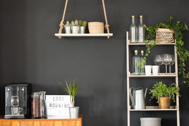 plant-lady-shelves