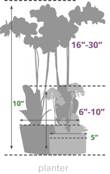 Size Guide Planter Orchid