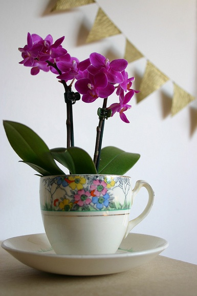 style teacup decorating