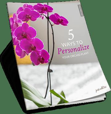 5 Ways Personalize