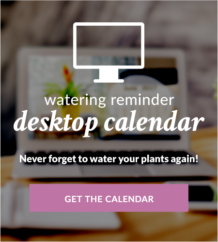 Watering Reminder Desktop Calendar