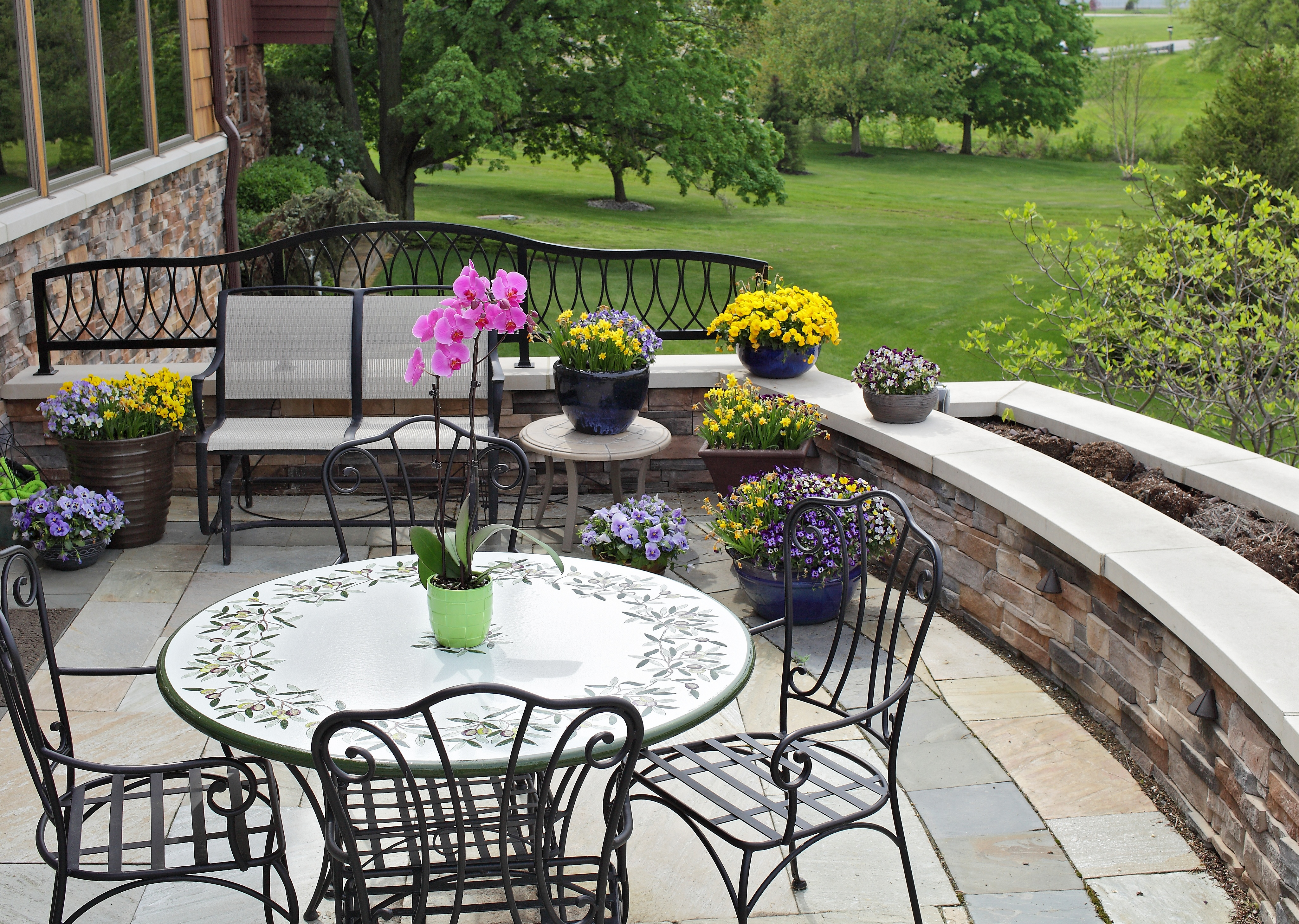 Summer Decorating Ideas: Indoor Plants That Add Flair to Your Backyard