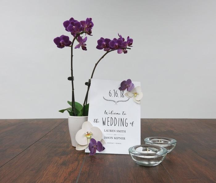 Diy Orchid Inspiration