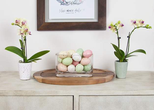 Get Your Home Ready for Easter: Our New Spring Decor Lookbook Is Here!