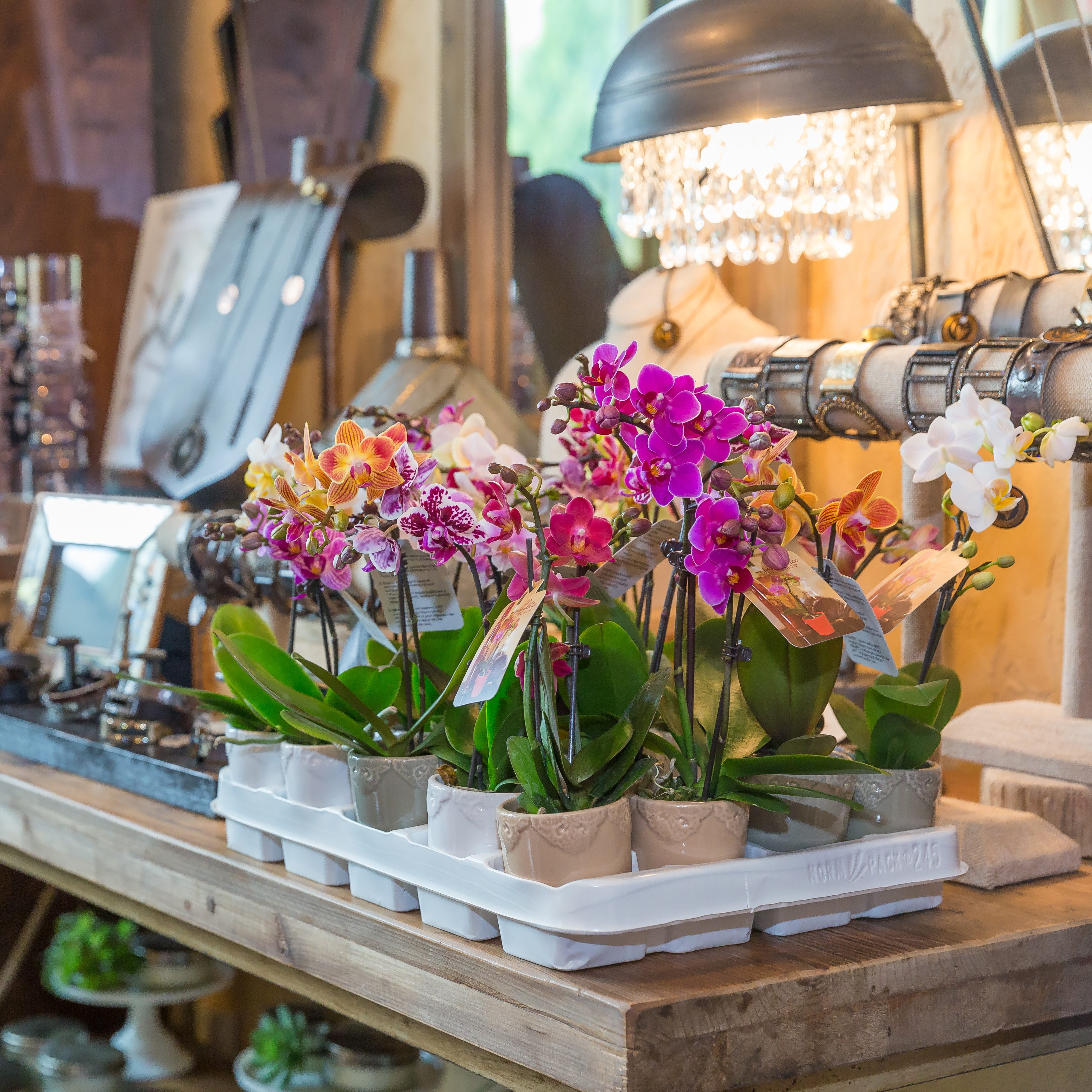 Choosing the Right Wholesale Floral Supplier
