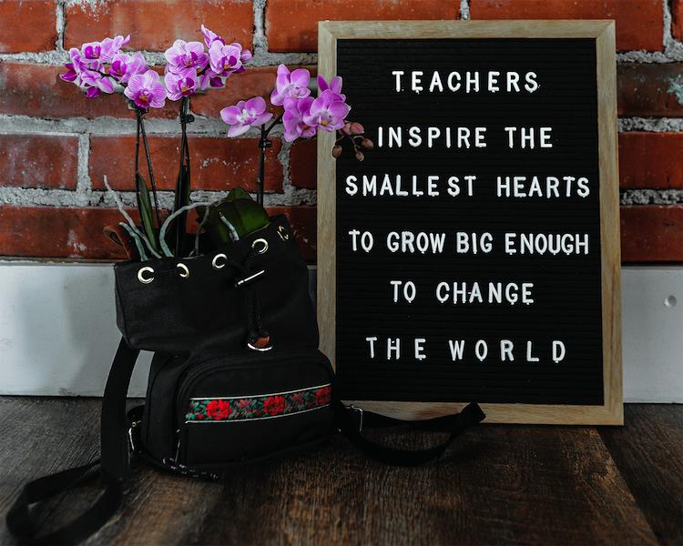 Plants In the Classroom: Send Teacher a Mini Orchid