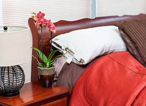 Can Keeping Orchids Have Positive Benefits for Your Health?